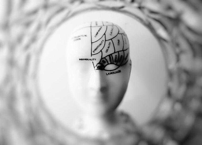 Beynin yalnızca algısal veriye değil, algısal değişime de ihtiyacı vardır. Değişimin olmaması uyarılma ve dikkatin azalmasına sebep olabileceği gibi algısal sapmalara da yol açabilir.