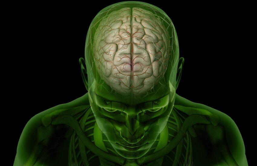 İnsan Beyniyle İlgili 10 İlginç Gerçek
